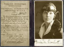 amelia-pilote-licence