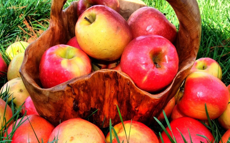 Τα μήλα του παραμυθιού