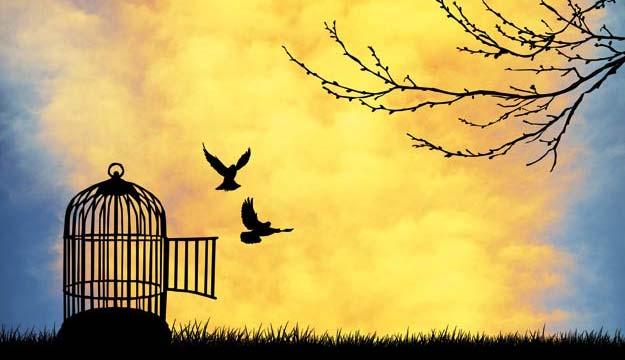 Ουρανός:  με άρωμα ελευθερίας