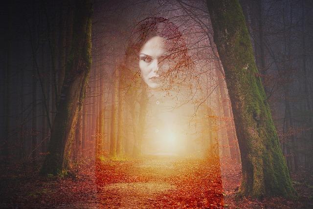 Το στοιχειωμένο δάσος