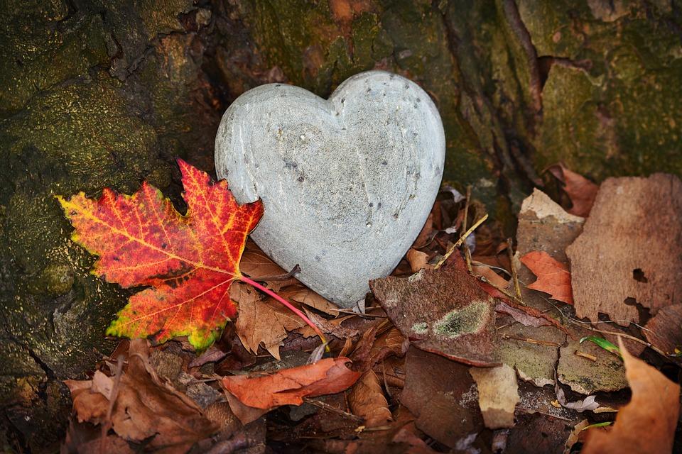 Η απόφαση μιας καρδιάς